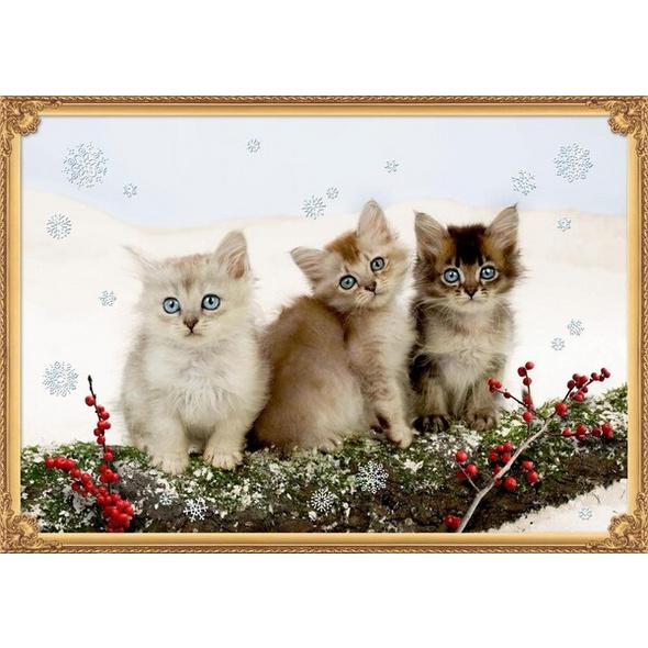 A3-Wandkalender - Katzentrio im Schnee
